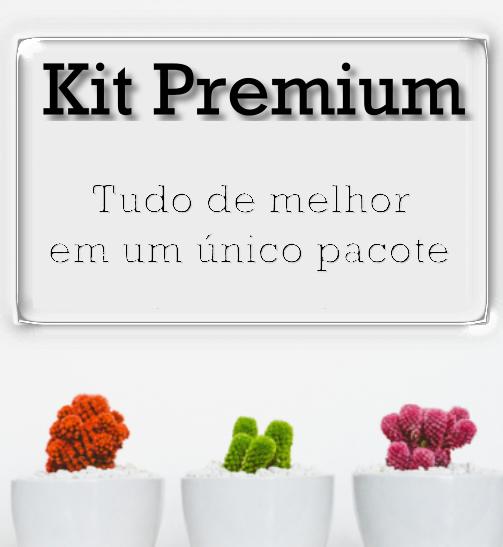 banner-kit-premium